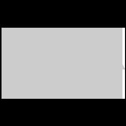 The Divine Mercy Image